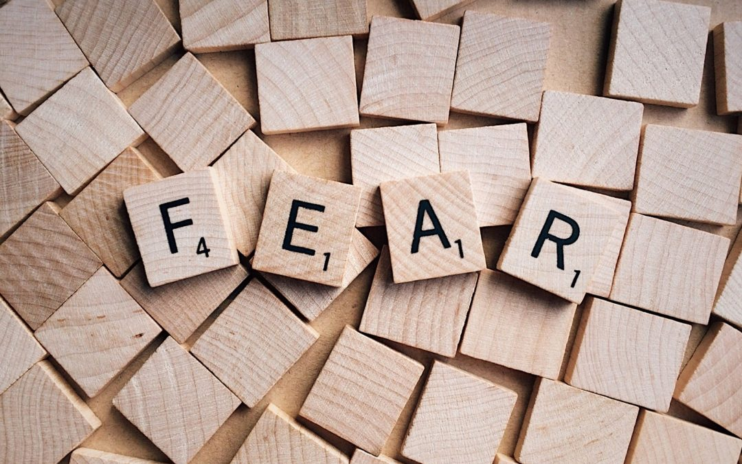 Fear: Your Best Friend